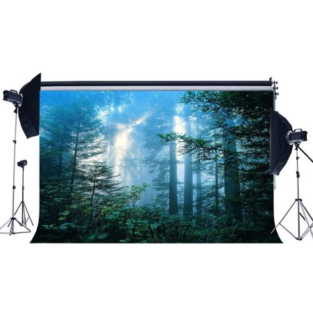 ABPHOTO Polyester 7x5ft Photography Backdrops Halloween Horror Night Mysterious Forest Sunshine Scene Seamless Newborn Baby Adults Masquerade Portraits Photo Background Photo Studio - Halloween Forest Scene