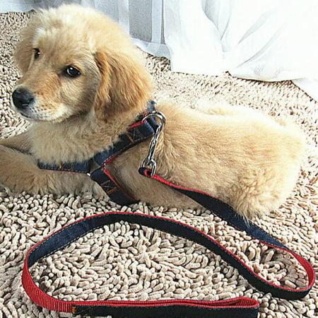 - Elfeland 120cm Pet Dog Puppy Chest Rope Strap Belt Restraint Lead Harness Leash Back Adjustable for Outdoor Walking