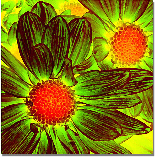 "Trademark Fine Art ""Pop Daisies V"" Canvas Wall Art by Amy Vangsgard"