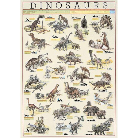 Dinosaurs Educational Chart (Dinosaurs Size Chart)