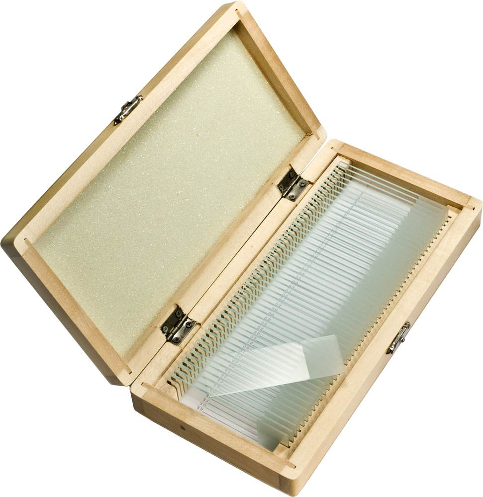 50 Prepared Microscope Slides with Wooden Case