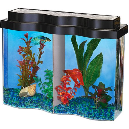 Hawkeye bettawave aquarium with divider for Fish tank divider 5 gallon