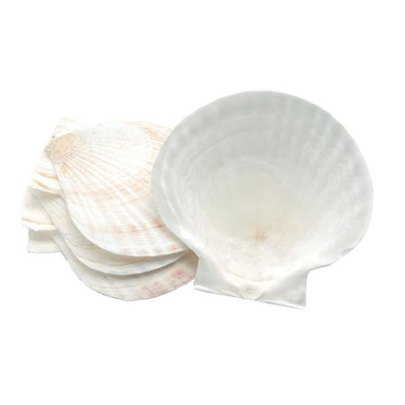 4 Baking Shells - Nantucket Seafood Nantucket Seafood Novelty Shell Baking Dish (Set of 4)