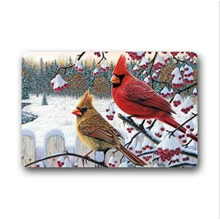 Arizona Cardinals Rug - WinHome Funny red Cardinal bird art Doormat Floor Mats Rugs Outdoors/Indoor Doormat Size 23.6x15.7 inches