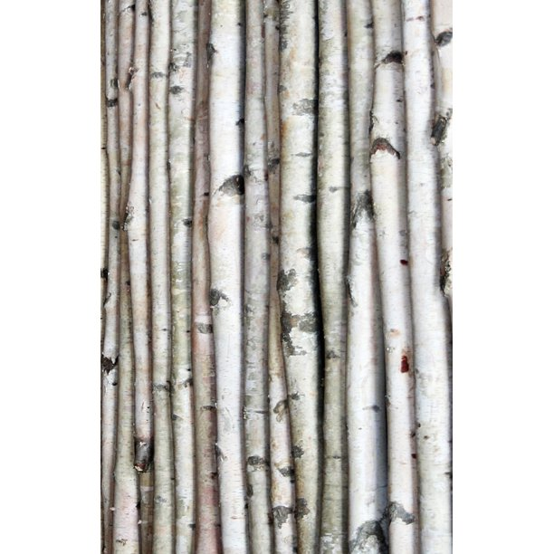 White Birch Pole 7ft Com, 7ft Curtain Pole