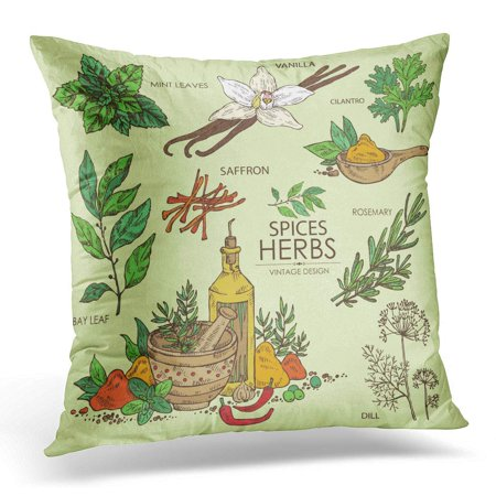 USART Vintage Collection of Herbs and Spice Vanilla Mint Bay Leaf Cilantro Dill Saffron Rosemary Beauty Pillow Case Pillow Cover 20x20 inch (Vintage Herbs Rosemary)