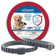 Dog Medication & Health Supplies: Adams