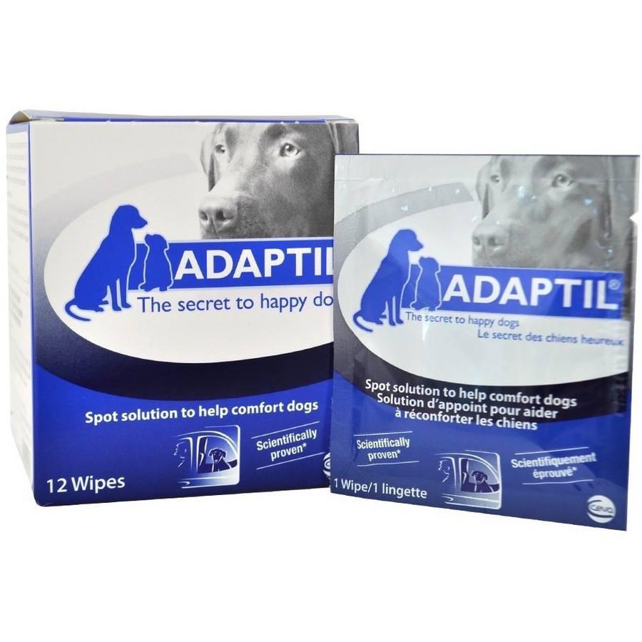 Image of ADAPTIL, DAP Wipes, 12 count