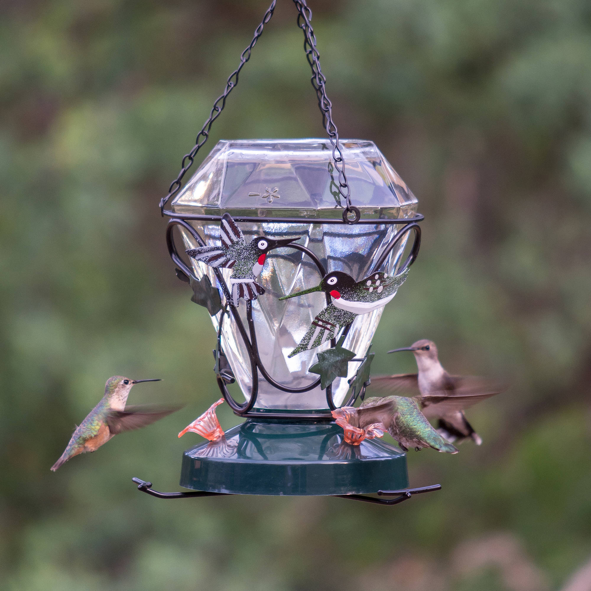 stoppers feeders pin bottle an all w hummingbird is wine you need decorative feeder empty