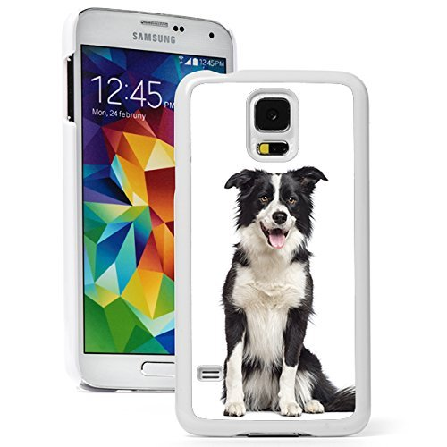 Samsung Galaxy (S5 Active) Hard Back Case Cover Border Collie Dog (White)