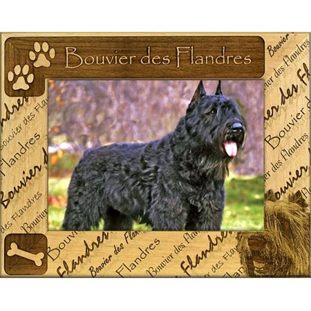 Giftworks Plus DBA0190 Bouvier Des Flandres Alder Wood Frame, 4 x 6 In