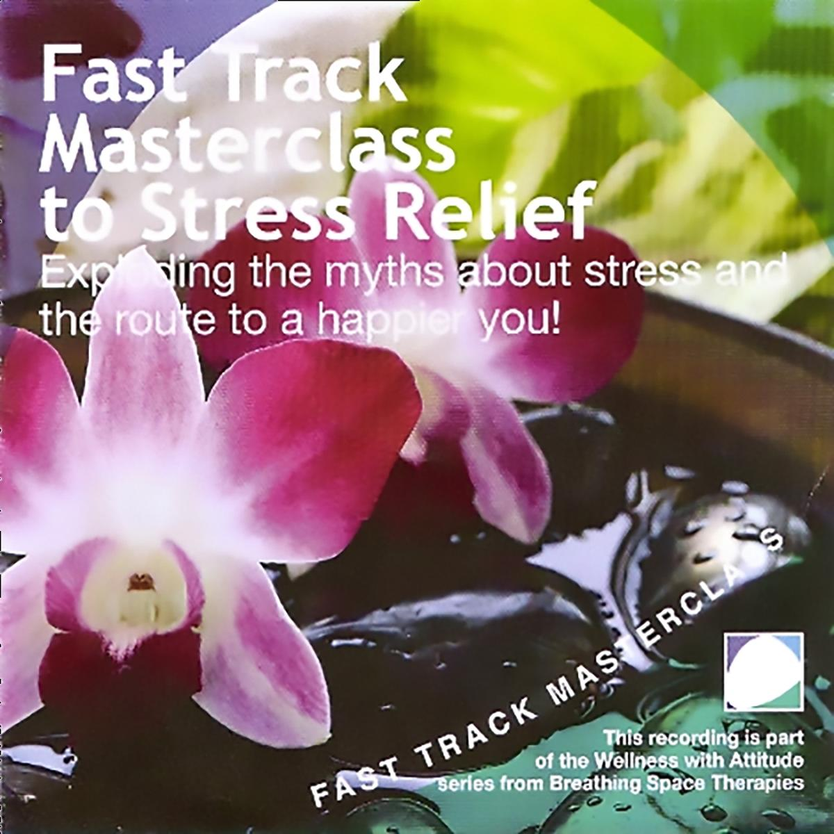Fast track masterclass to stress relief - Audiobook