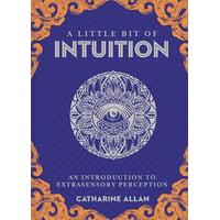 Little Bit: A Little Bit of Intuition, Volume 19 (Hardcover)