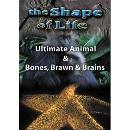 Shape of Life 4: Ultimate Animal & Bones (DVD)