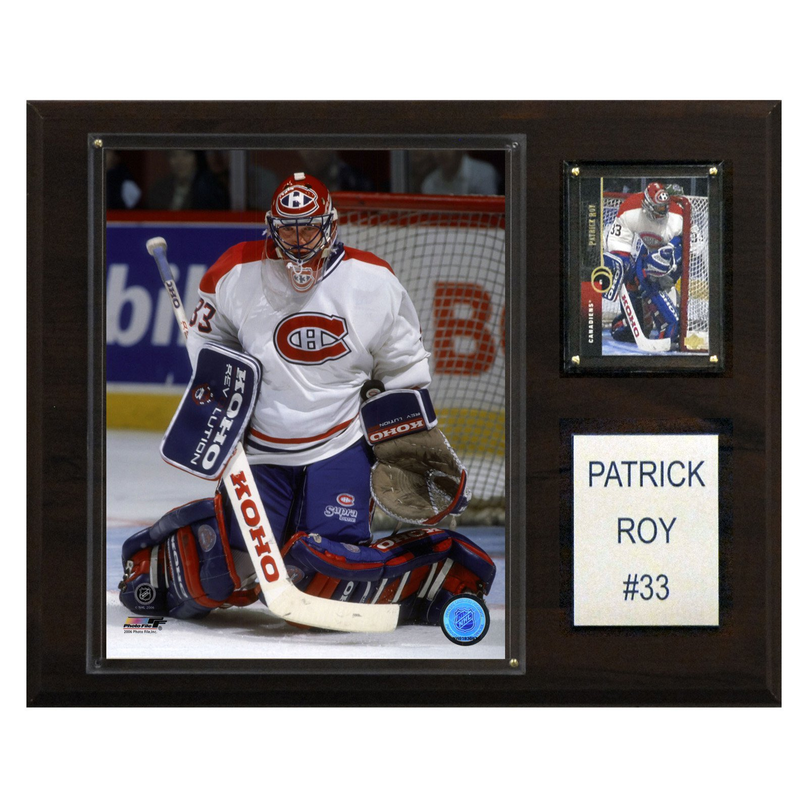C&I Collectables NHL 12x15 Patrick Roy Montreal Canadiens Player Plaque