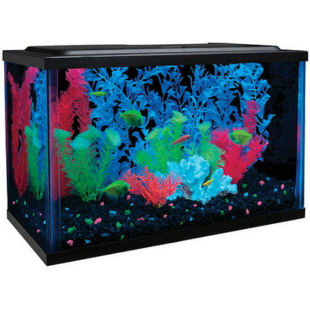 glofish 5-gallon aquarium kit with led and tetra whisper filter ...