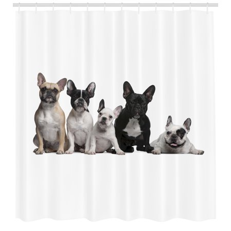 Bulldog Shower Curtain Group Of Young French Bulldogs With Adorable Expressions Animal Lover Photo