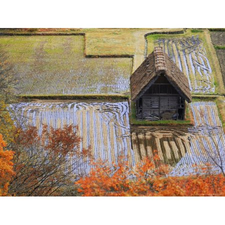 Farm Outbuilding Surrounded by Ploughed Rice Fields Close to Gokayama Print Wall Art By Michael