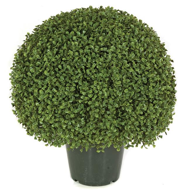 Autograph Foliages AUV-150050 20 in. Boxwood Ball Topiary, Green