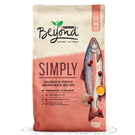 Purina Beyond Simply Salmon & Whole Brown Rice Recipe Adult Dry Cat Food, 6 Lb
