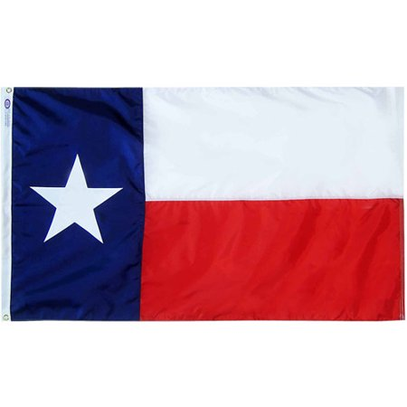 Texas State Flag  4 X 6  Nylon Solarguard Nyl Glo  Model  145270