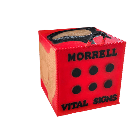Morrell Vital Signs Foam Archery Target For Any Bow And Any Arrow Tip