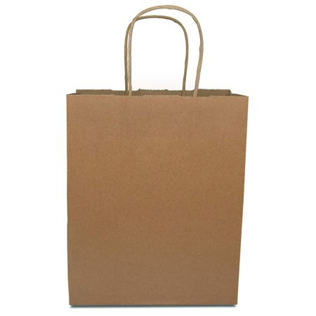 Paper Shopping Bags With Handles (Prime Line Packaging 8X10X4