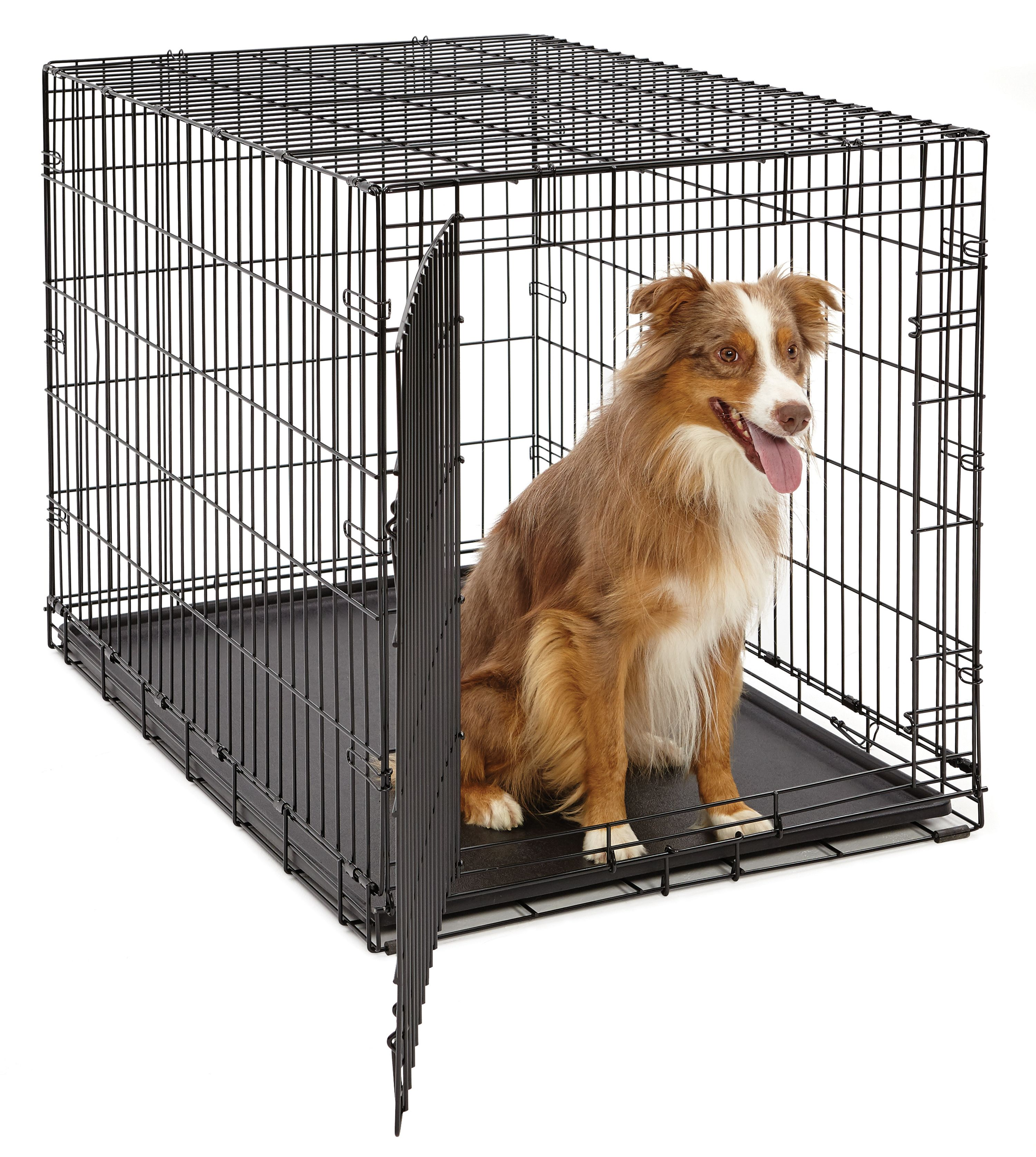 "Midwest 42"" Life Stages Single Door Dog Crate"