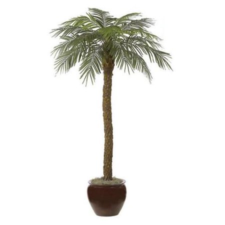Autograph Foliages P-3602 - 8 Foot Date Palm Tree - Green