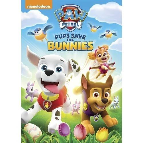 PAW Patrol: Spring Into Action (Widescreen)