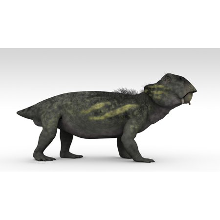 Lystrosaurus A Therapsid From The Permian And Triassic Period Canvas Art   Kostyantyn Ivanyshenstocktrek Images  19 X 11