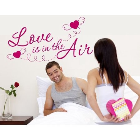 Love is in the Air Wall Decal Wall Sticker Vinyl Wall Art Home Decor W