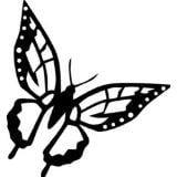 Living Room Art Butterfly Kids Girls