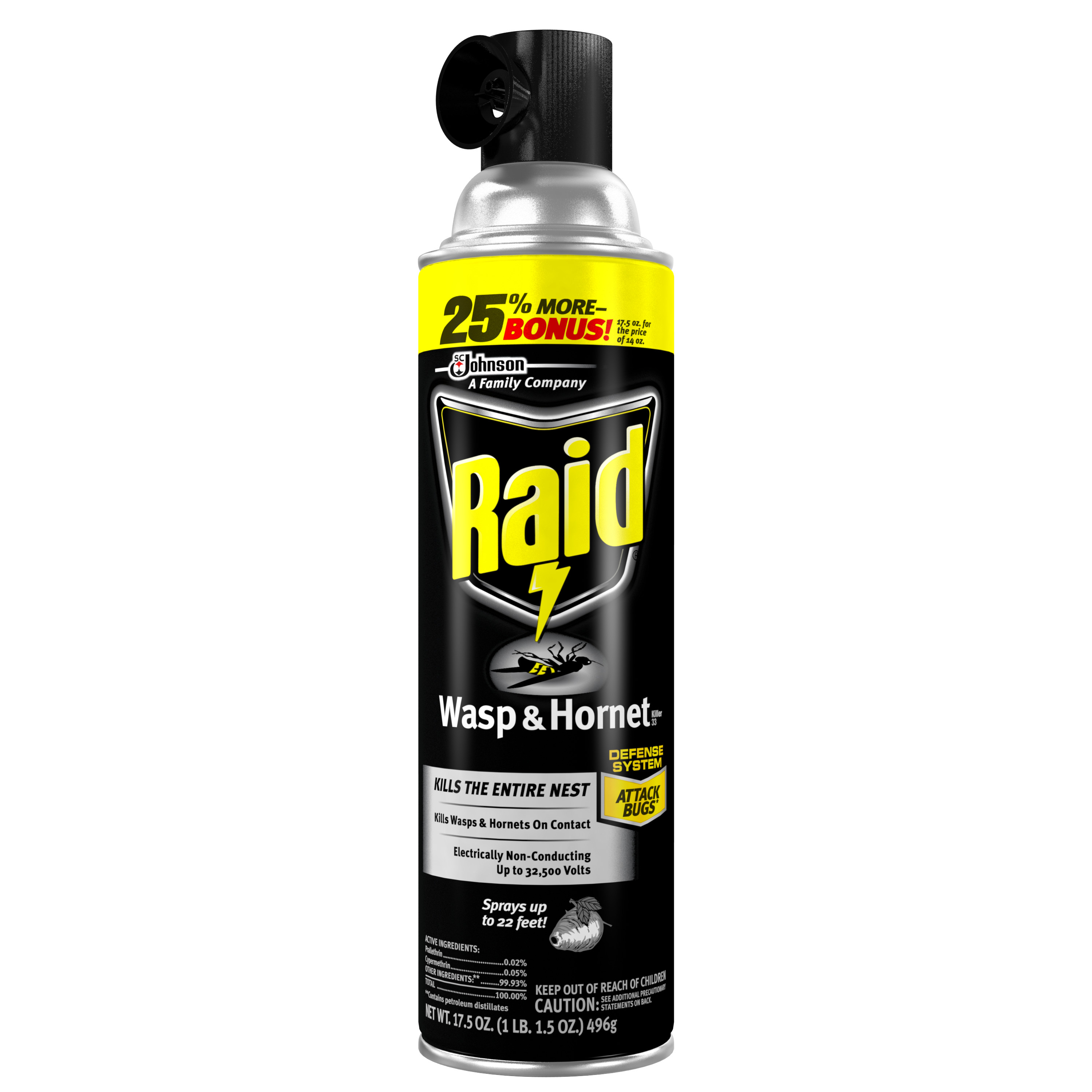Raid Wasp & Hornet Killer 17.5 Ounces