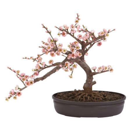 Nearly Natural Cherry Blossom Bonsai Silk Tree Enjoy the beauty of a cherry blossom tree all year long with the Cherry Blossom Bonsai Silk Tree. This silk tree is made of polyester materials and plastic so you can have some greenery in your room without the hard work that goes into growing one. The artificial silk tree features leaves that mimic the soft pastel shades of the real cherry blossom tree. Unlike the actual tree, these leaves will not fall off, and you will be able to enjoy their delicate beauty as long as you like. The Cherry Blossom Artificial Tree stands 15  tall. This makes it suitable for placements in the corner, a niche or alcove that you may have in your home or office. You could place it on a desk or table to add variety to your decoration pieces. The tree also comes with a decorative pot that will add both elegance and tranquility to your room. Liven up your room with this silk tree for lasting and effortless beauty.