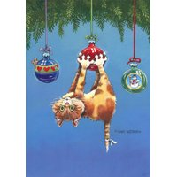 LPG Greetings What Now Cat Box of 18 Funny / Humorous Christmas Cards