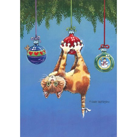 Greetings Box - LPG Greetings What Now Cat Box of 18 Funny / Humorous Christmas Cards