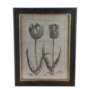 "18"" Botanic Beauty Decorative Vintage Style Double Tulip Print Framed Wall Art"