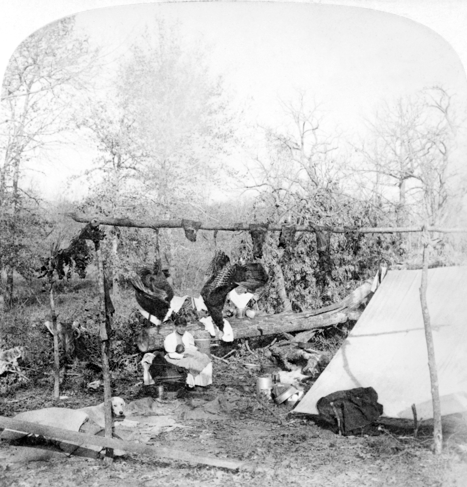 Shawnee Venison C1900 Ncuring Venison In A Shawnee Camp Stereograph C1900 Poster Print by... by Granger Collection