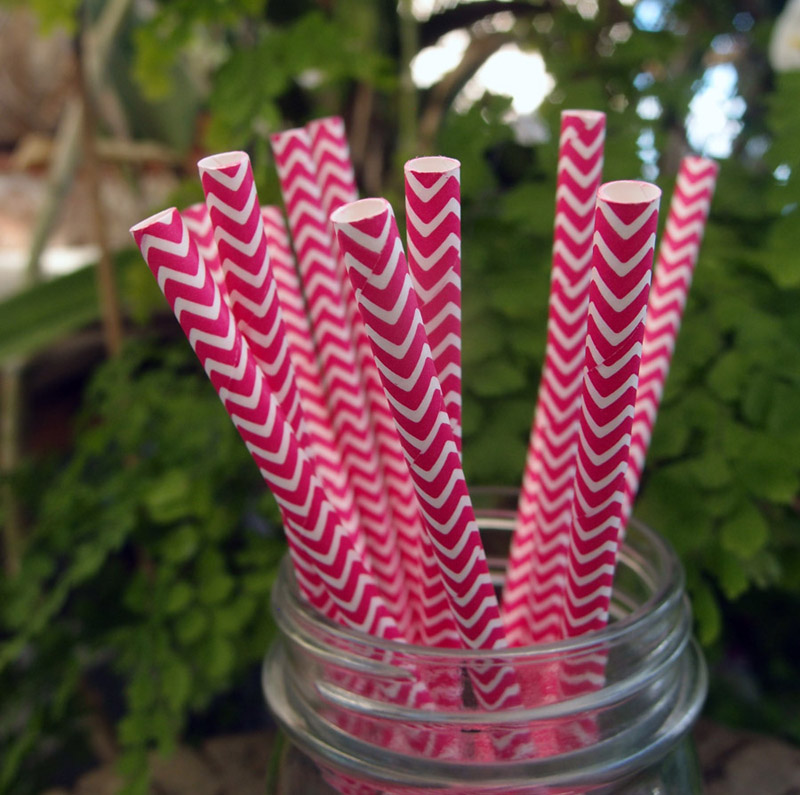 Quasimoon Fuchsia Chevron Patterned Party Paper Straws (12 Pack) by PaperLanternStore