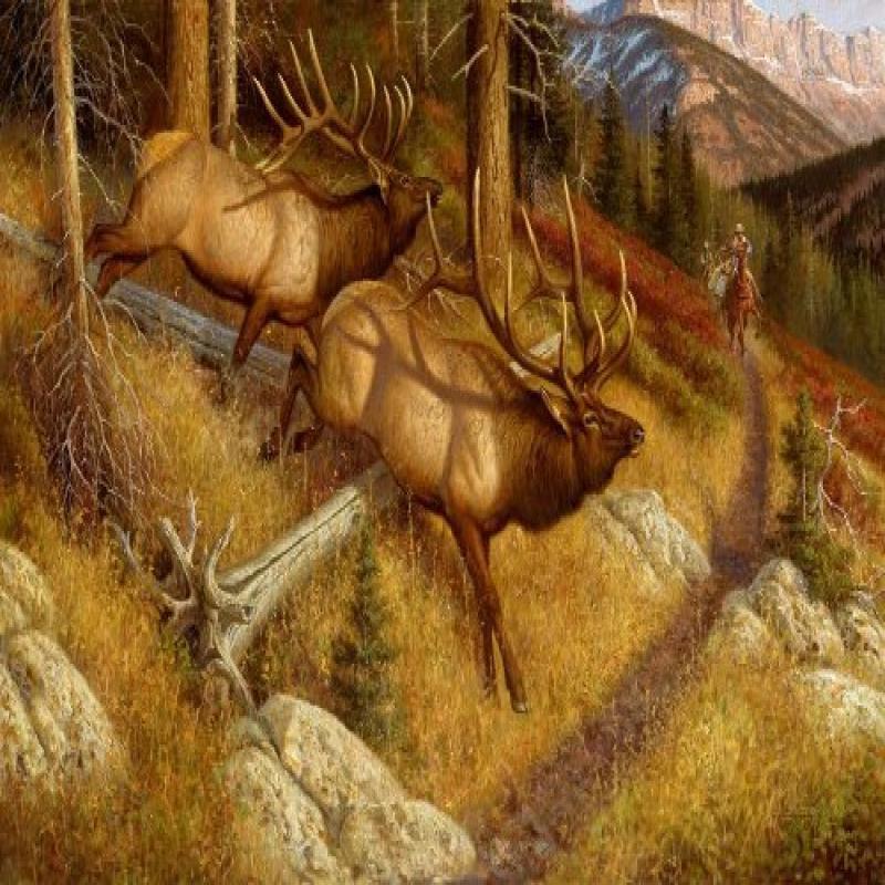 Lambson Spooked Elk Doormat by Custom Printed Rugs