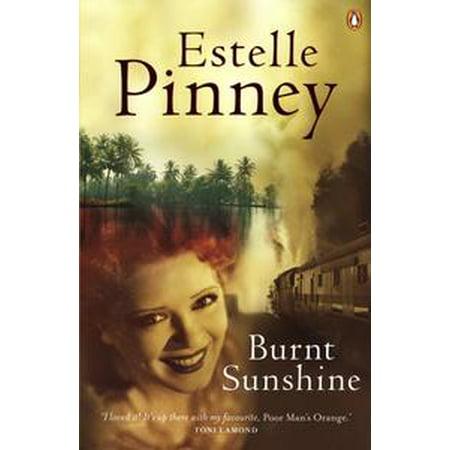 Burnt Sunshine - eBook (Sun Bunny)