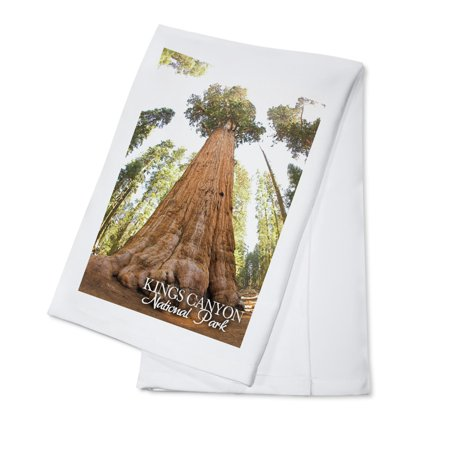 General Grant Tree - Kings Canyon National Park, California - Lantern Press Photography (100% Cotton Kitchen Towel)