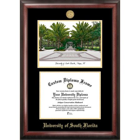 University Of South Florida Diploma Frames | Frameviewjdi.org