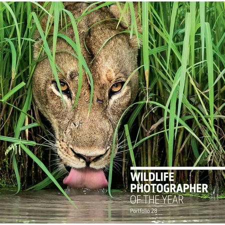 Wildlife Photographer of the Year: Portfolio 28 (Natural History Museum Photographer Of The Year 2016)