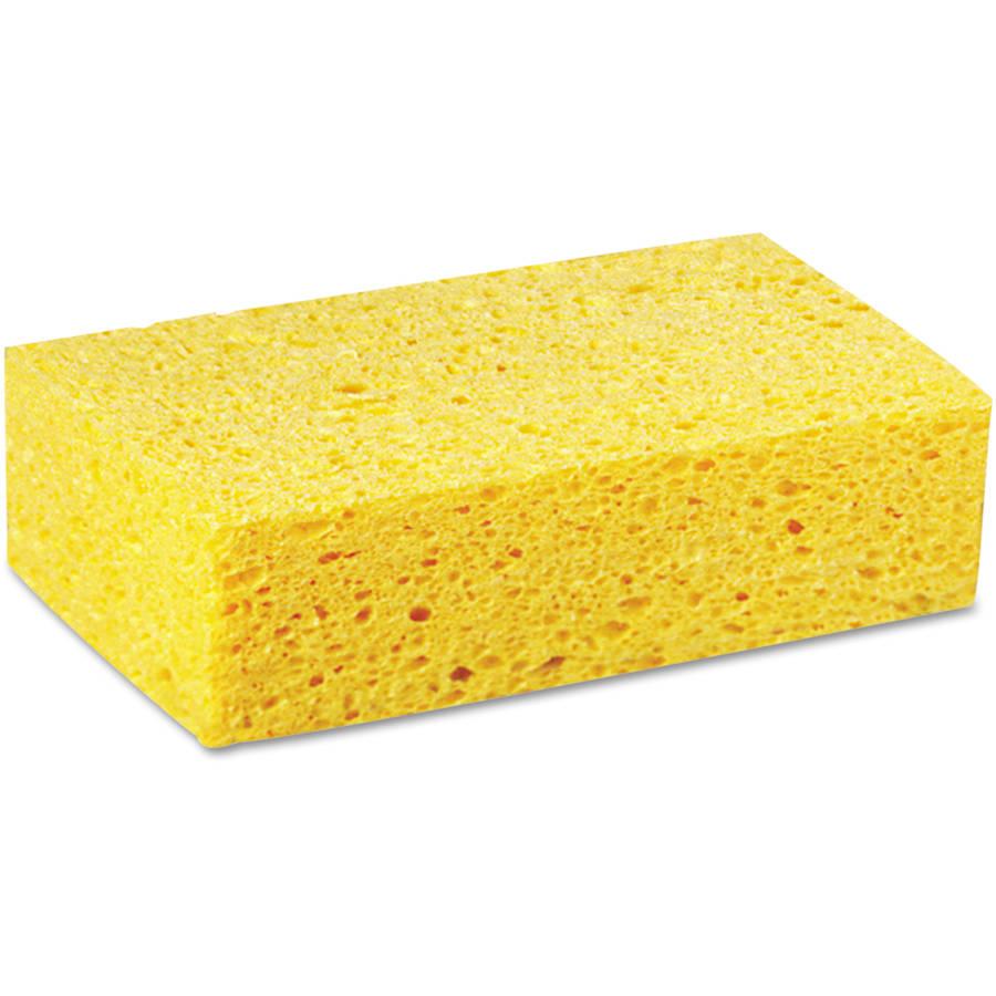 Boardwalk Cellulose Sponges, Large, 24 count