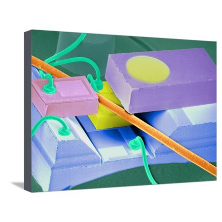 Coloured SEM of a Laser Unit for Fibre Optics Stretched Canvas Print Wall Art By Volker Steger (Laser Print Unit)