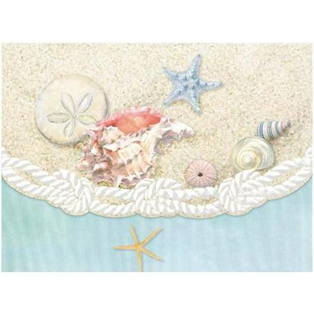 Carol Wilson Fine Arts Inc Sea Shells 10 Card Set Portfolio Carol Wilson Fine Arts