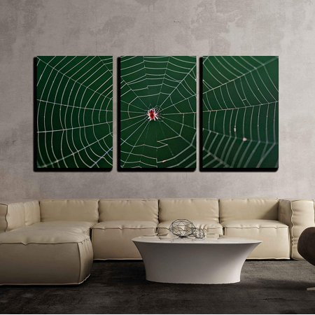 wall26 - 3 Piece Canvas Wall Art - Small Spider in Center of Its Web - Modern Home Decor Stretched and Framed Ready to Hang - 24