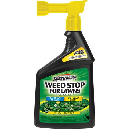Spectracide Weed Stop For Lawns Concentrate  Ready To Spray   32Oz